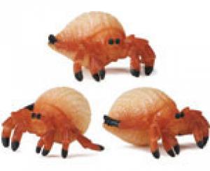 Hermit Crabs - Good Luck Minis Set of 10 Safari Ltd
