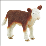Safari Hereford Calf