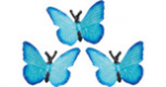 Safari Mini Butterflies 3 pack