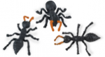 Safari Mini Ants 3 pack
