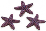 Safari Mini Starfish 3 pack